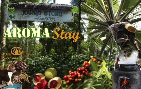 banyuwangi activities - Aroma stay