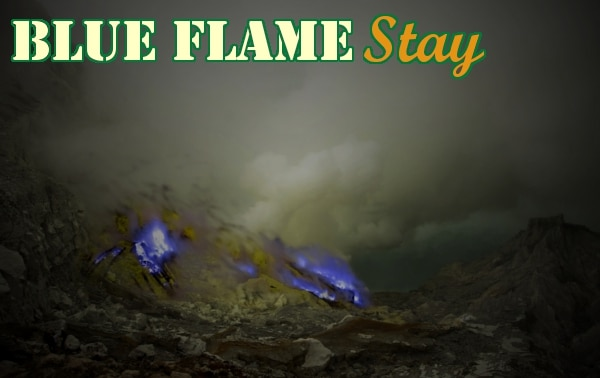 Blueflame-stay
